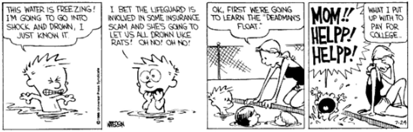 Calvin & Hobbes 5