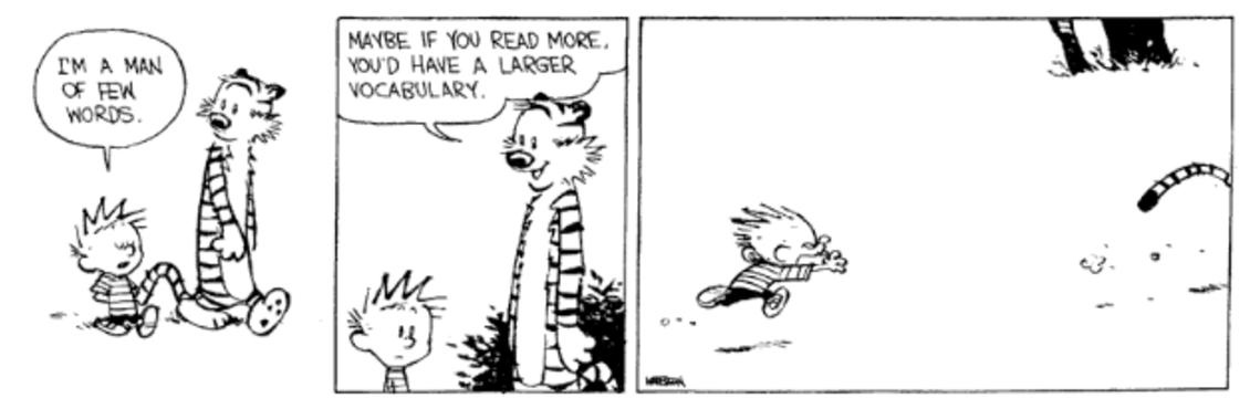 Calvin & Hobbes 7