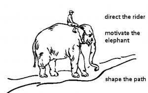 elephant-the-rider